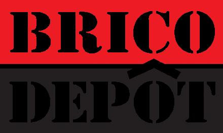 Le magasin Brico Dépôt à Valence