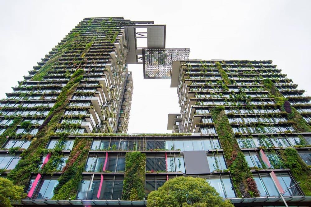 Végétalisation des villes, la solution idéale pour faire face aux changements climatiques